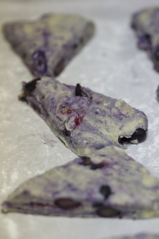 Blueberry and Lavender Scones